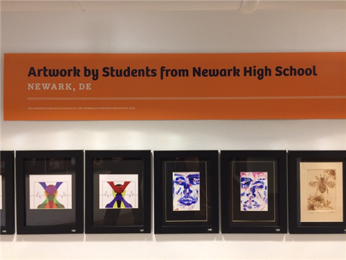 Newark High School Art Display