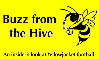 Buzz from the Hive