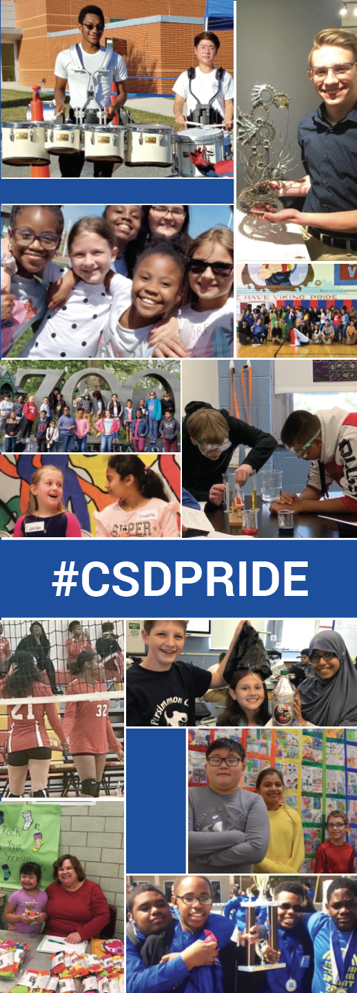 Christina School District Highlights Collage
