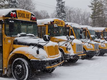 Row of school buses covered in snow